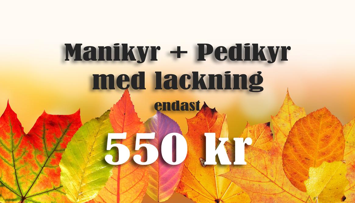 Venus-nagelsalong-i-linköping-November-Kombo-erbjudande-naglar-linköping-nagelförlängning-nagelförstärkning-gelénaglar